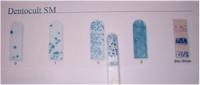 デントカルトSM(むし歯を発生・進行させるミュータンス菌の培養検査)